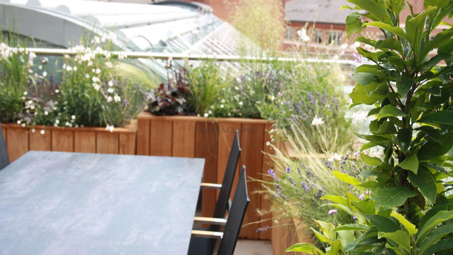 Terrace Garden Tips Turn Into Urban Oasis