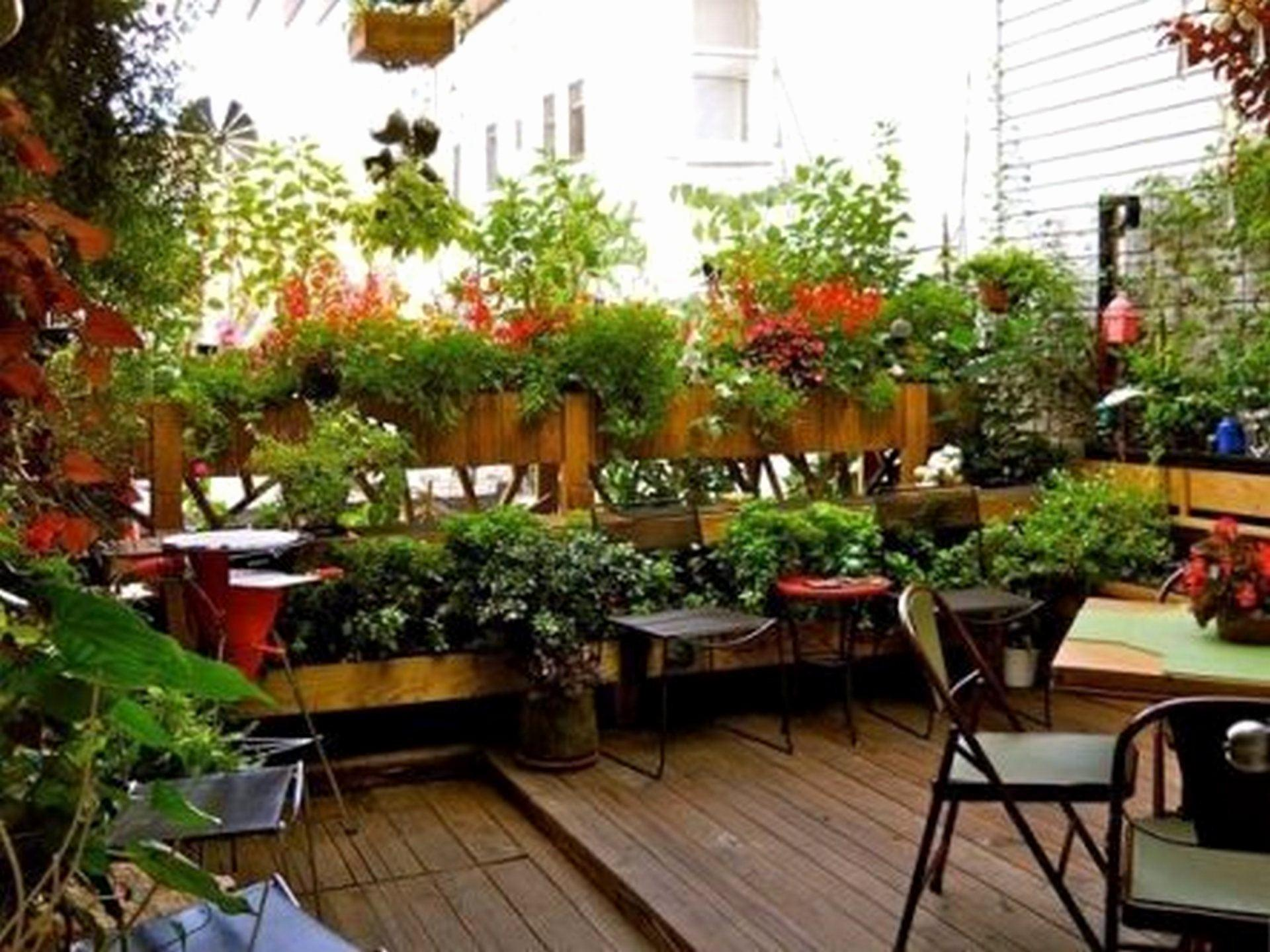 Terraced House Back Garden Ideas Magnificent