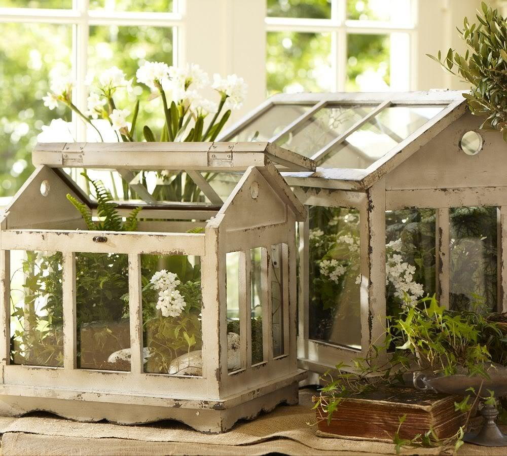 Terrarium Ideas Inspiration Easy Diy Indoor