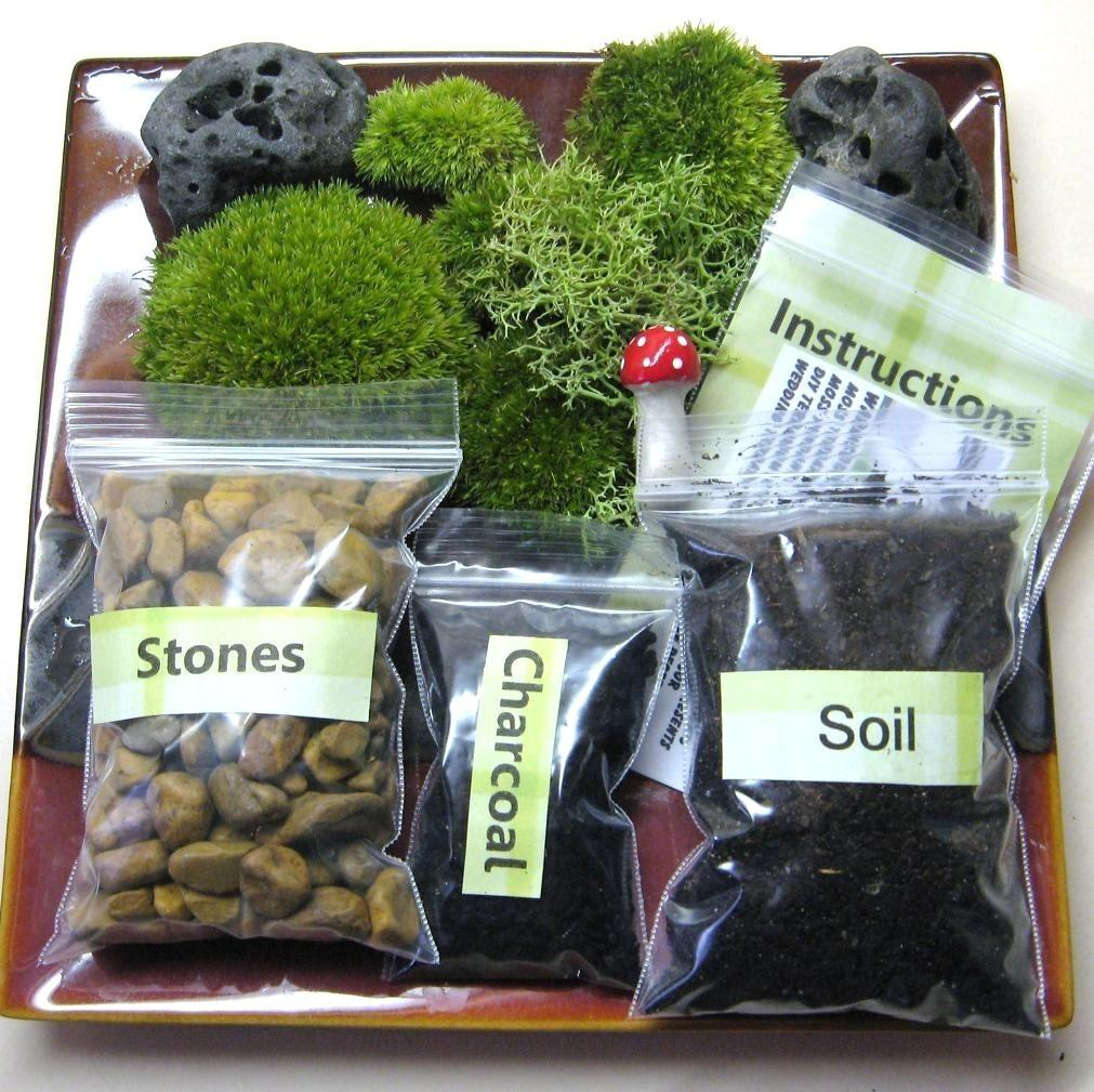 Terrarium Kit Diy Mushroom Included Naturalwoodland