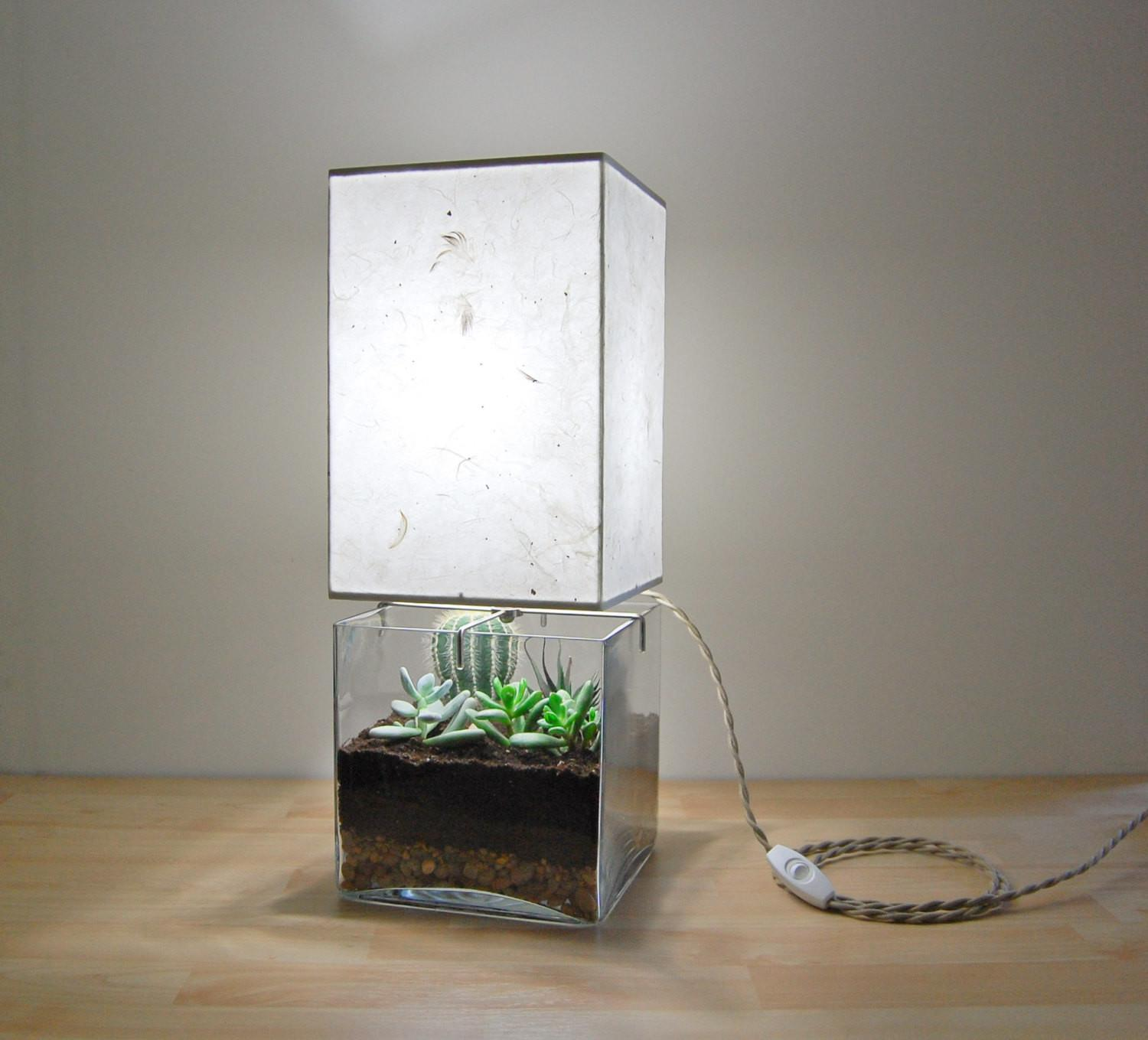 Terrarium Lamp Beautiful Unique Way Bring