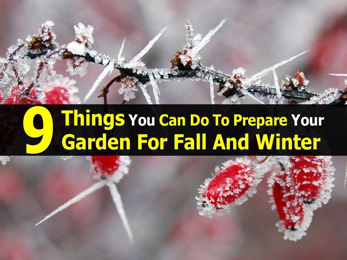 Things Can Prepare Your Garden Fall Winter