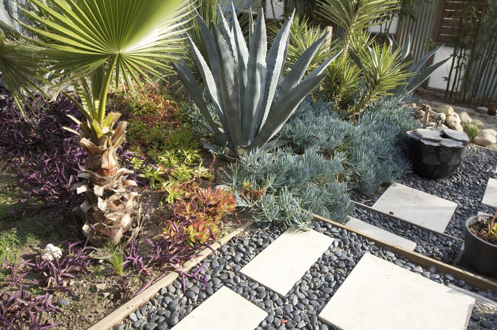 Tips Minimal Maintenance Garden Design