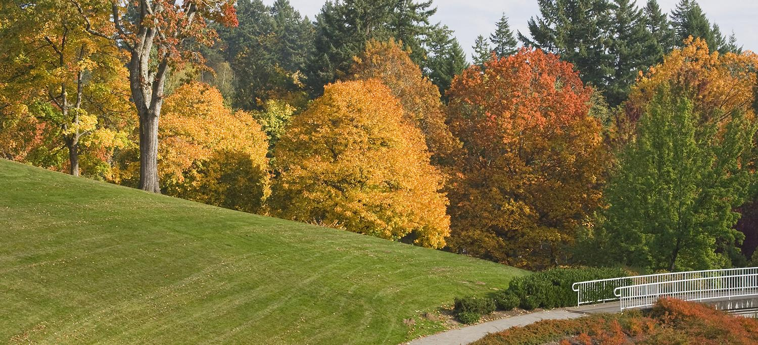 Tips Prepare Your Yard Autumn High Tech Landscapes