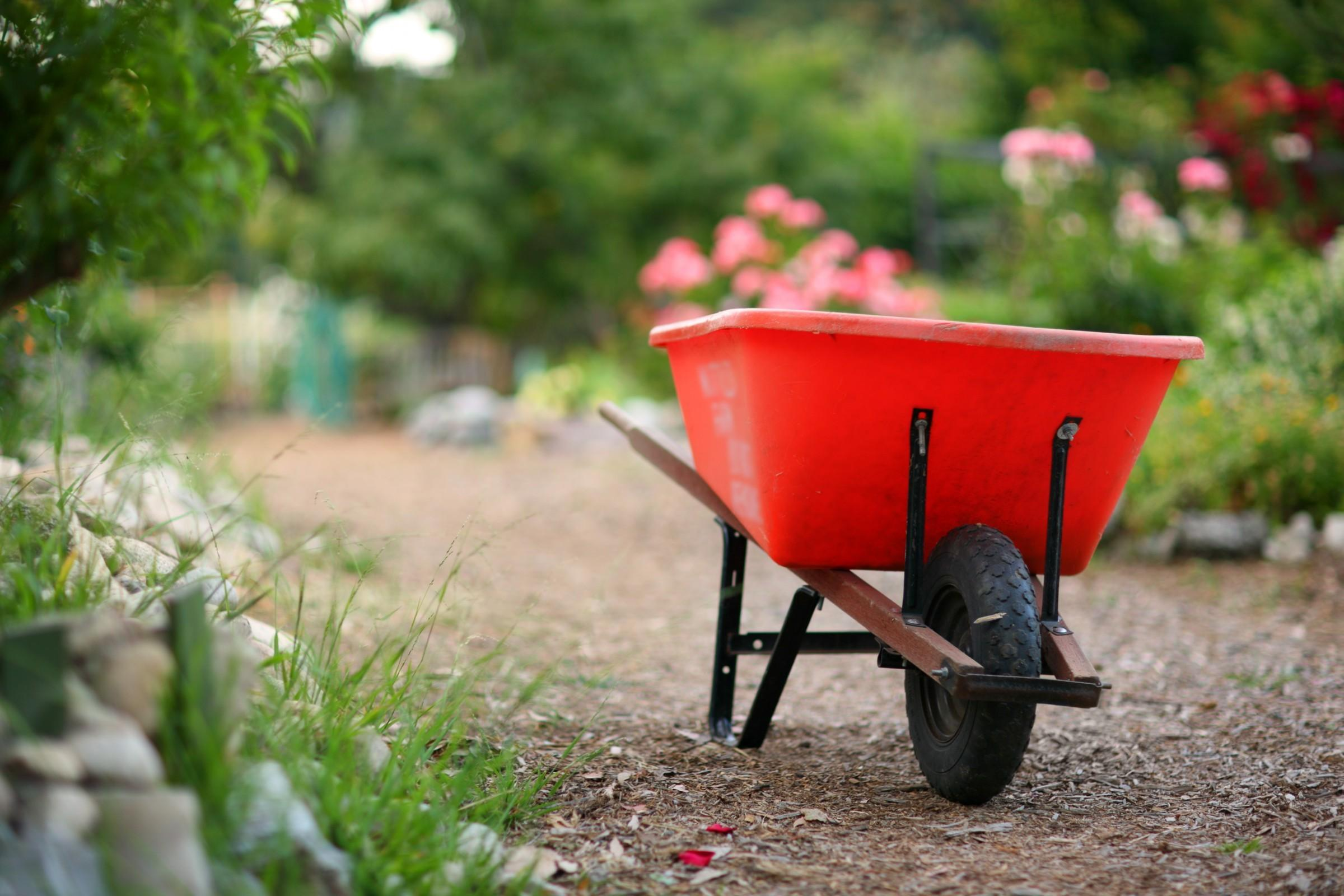 Tips Spring Cleaning Your Yard