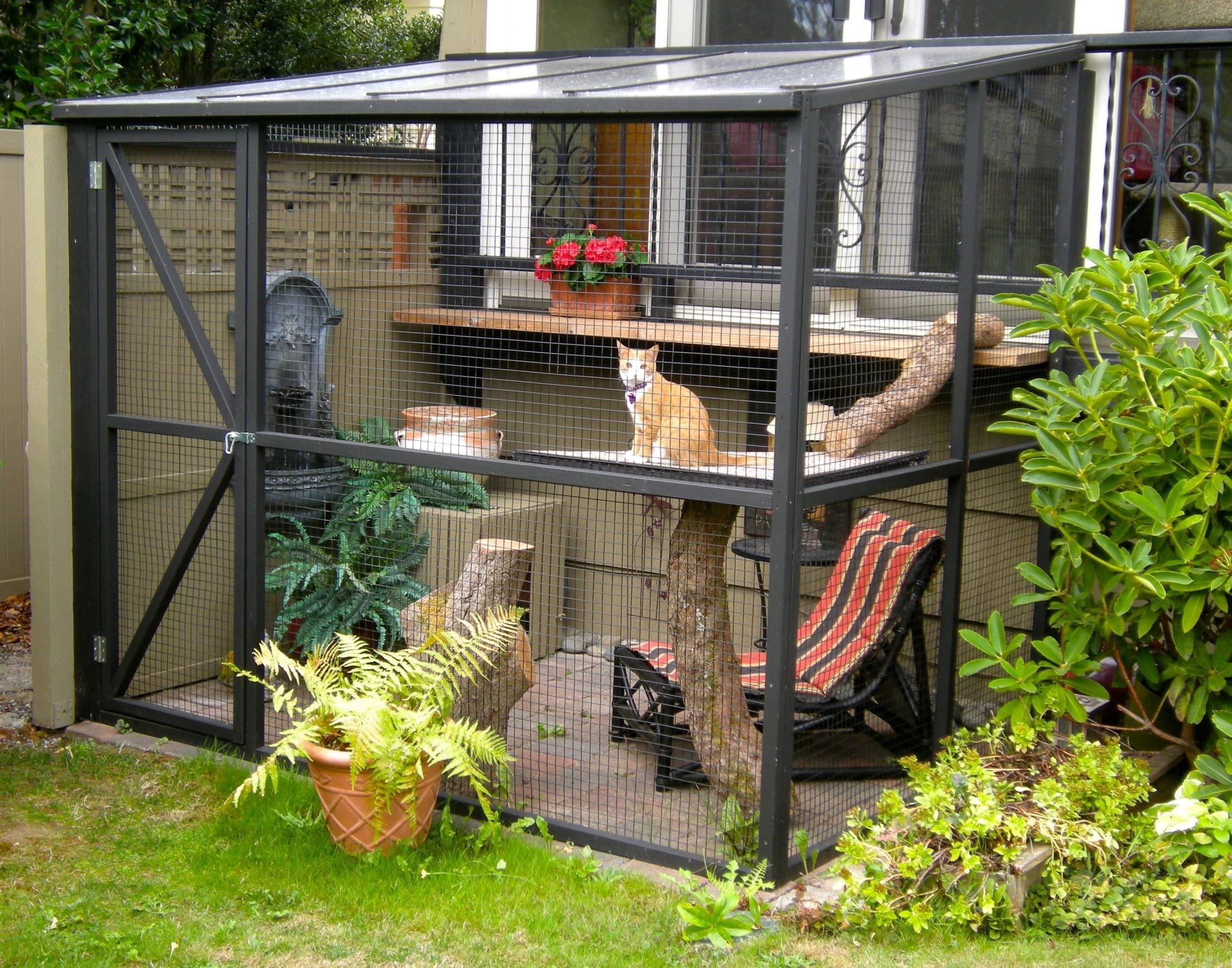 Top Benefits Catio Spaces