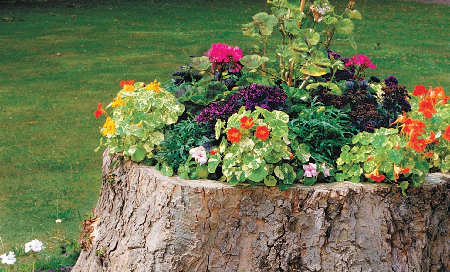 Top Diy Projects Spruce Your Yard Hyperactivz