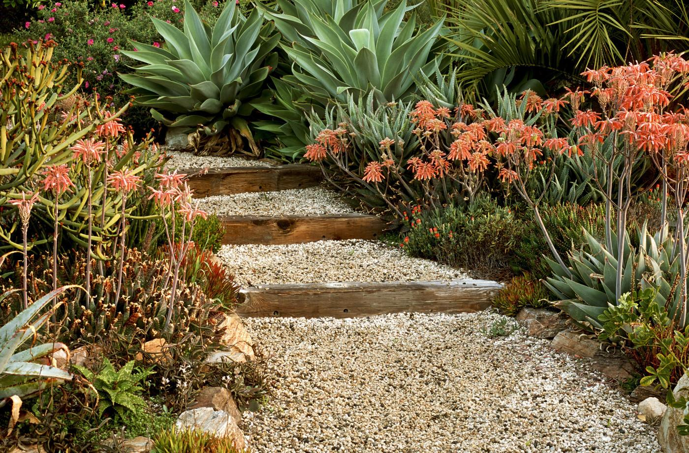 Transform Your Yard Into Garden Oasis