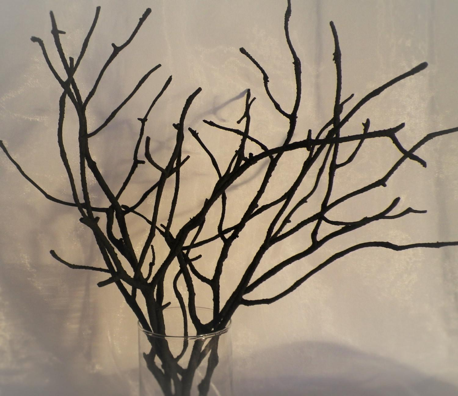 Tree Branches Set Black Painted Wood Ligitasworkshop