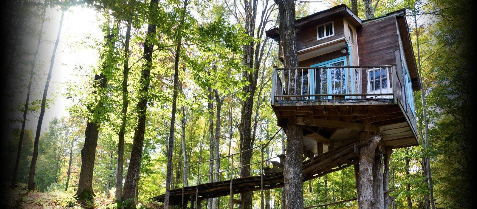 Tree House Design Ideas Modern Family