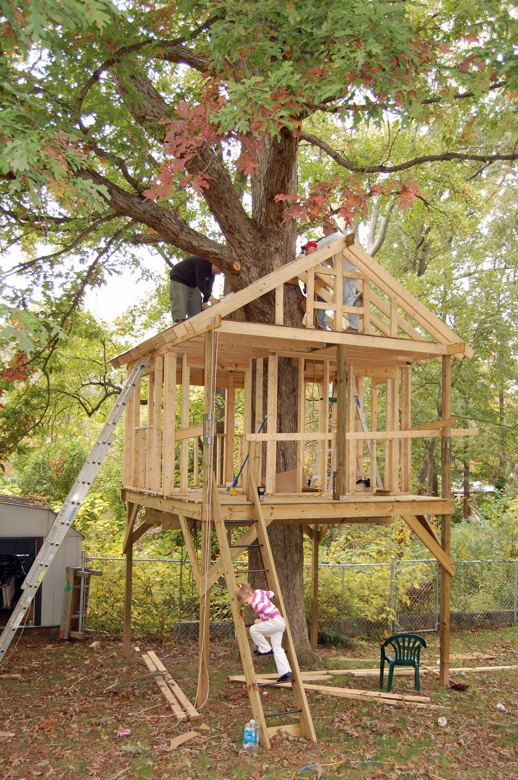 Tree Houses Play Around
