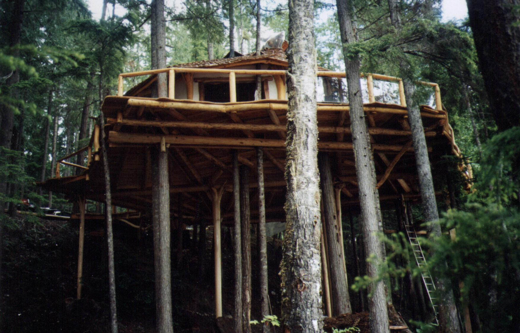 Treehouse Camping British Columbia Hidden