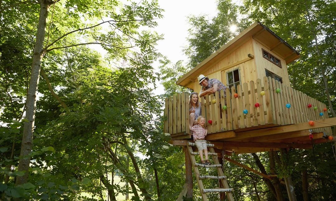 Treehouses Luxury High Life Recent Projects Tree