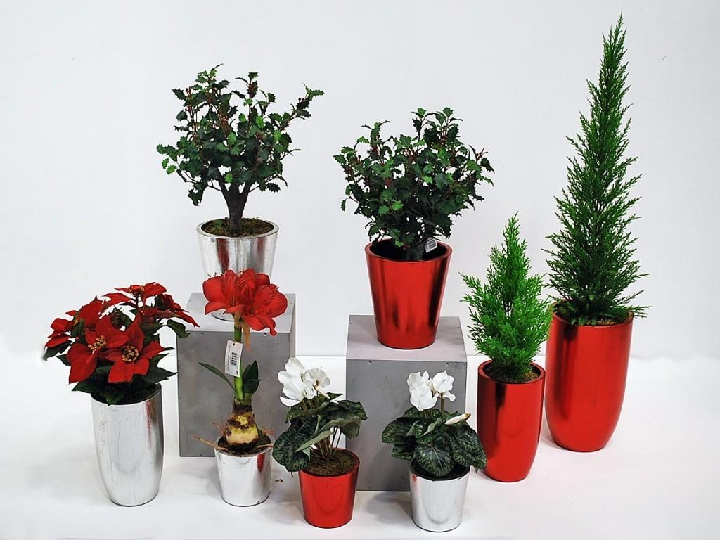 Treelocate Artificial Plants Flowers Product Focus