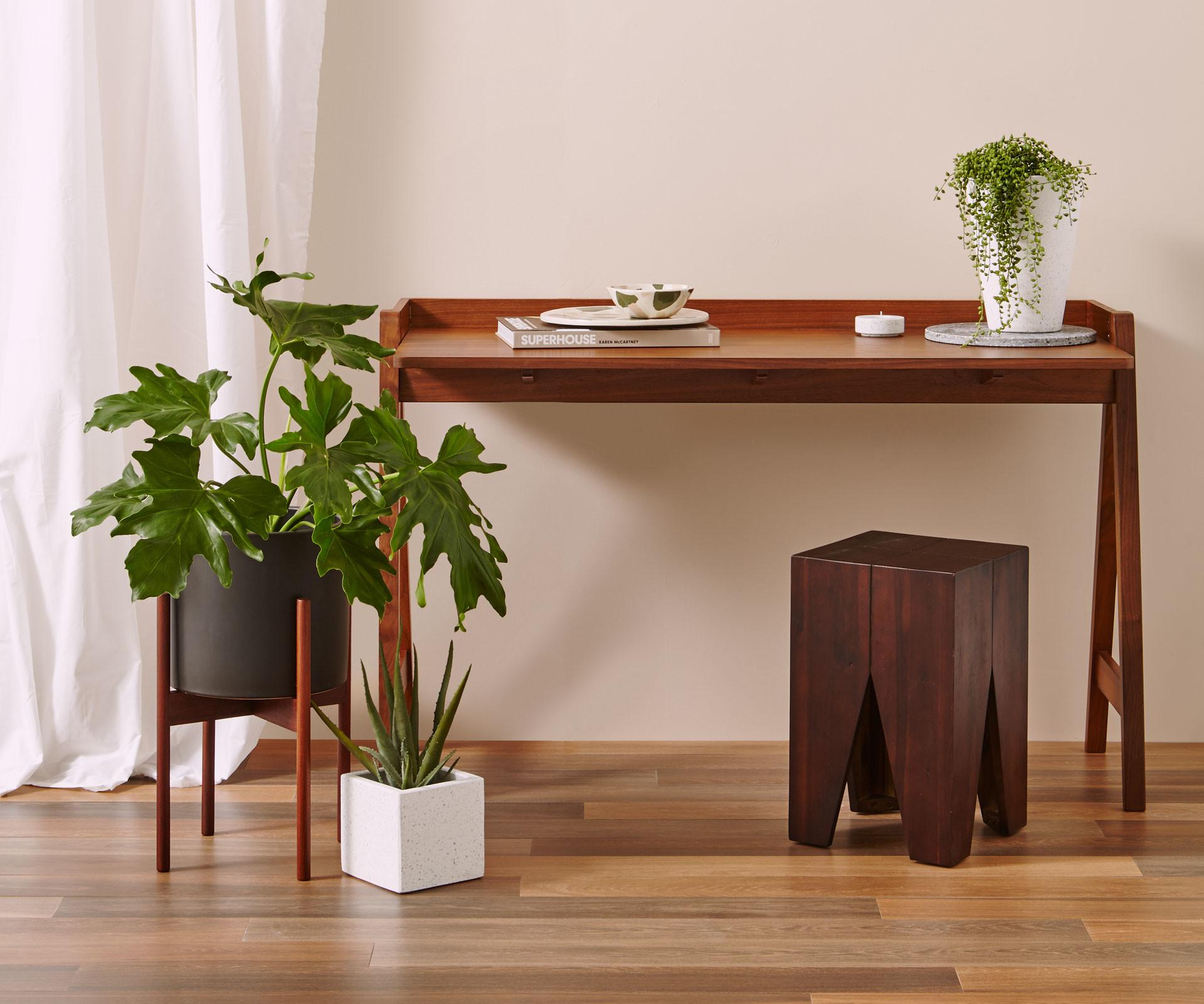 Trend Report Dark Wood Indoor Plants Light Terrazzo
