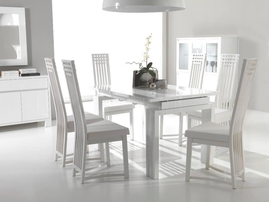 Trendy Dining Room Chairs Modern Table