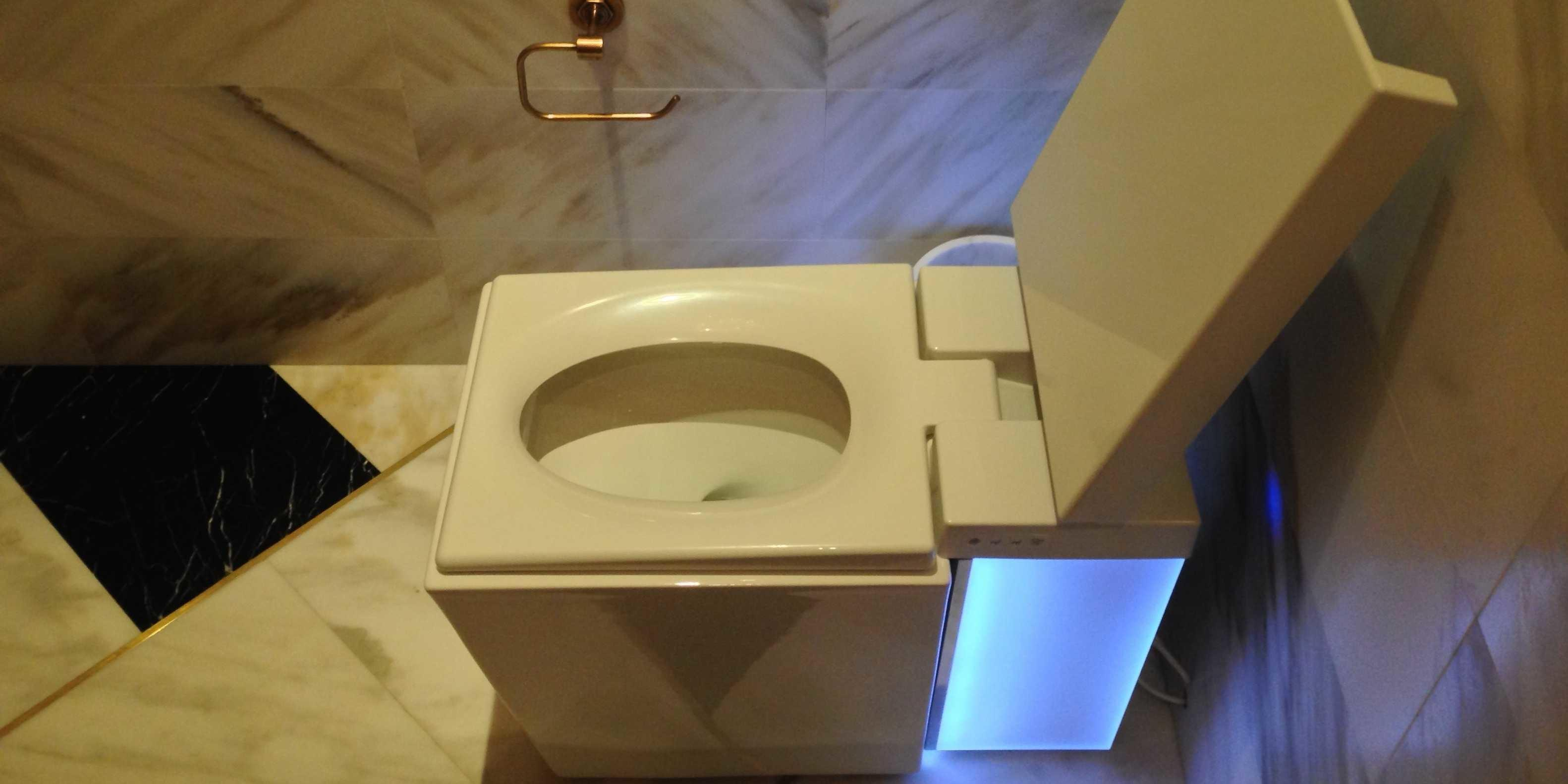 Tried 700 Luxury Toilet Business Insider