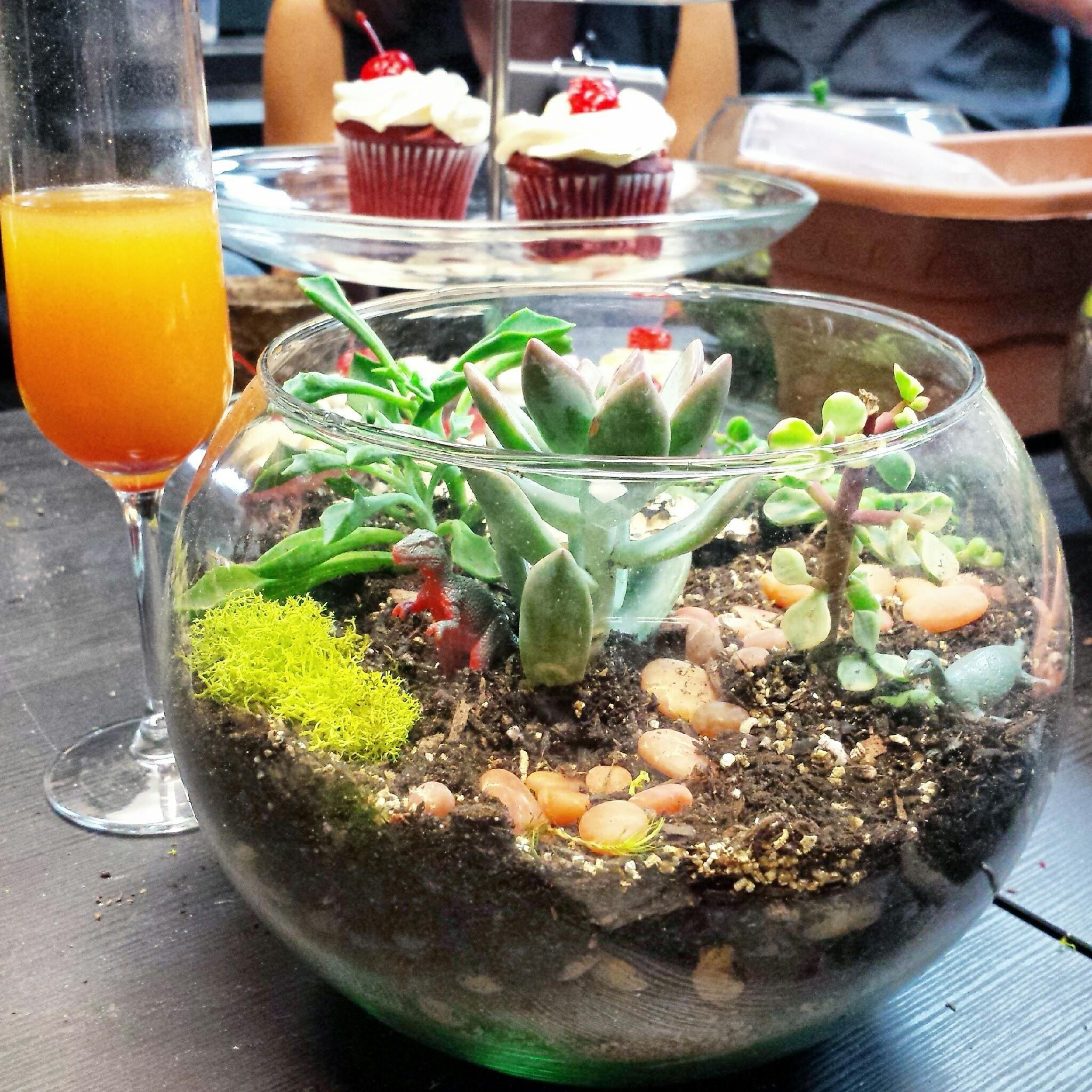 Try Diy Terrarium Workshops Tanaya Table
