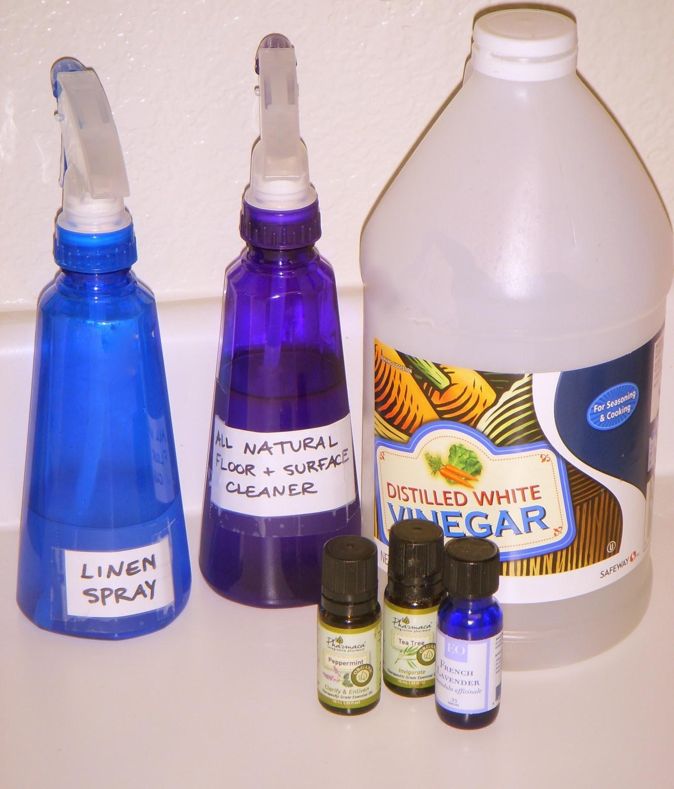 Twenty Something Home Homemade Natural Cleaning Products