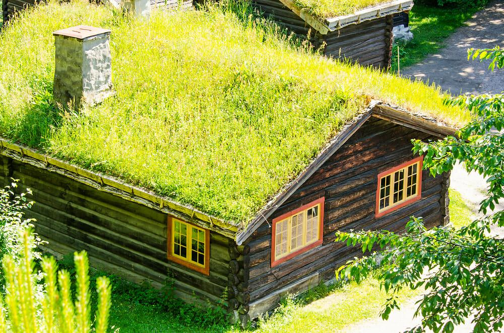 Type Eco Friendly Roof Best Cold Climates