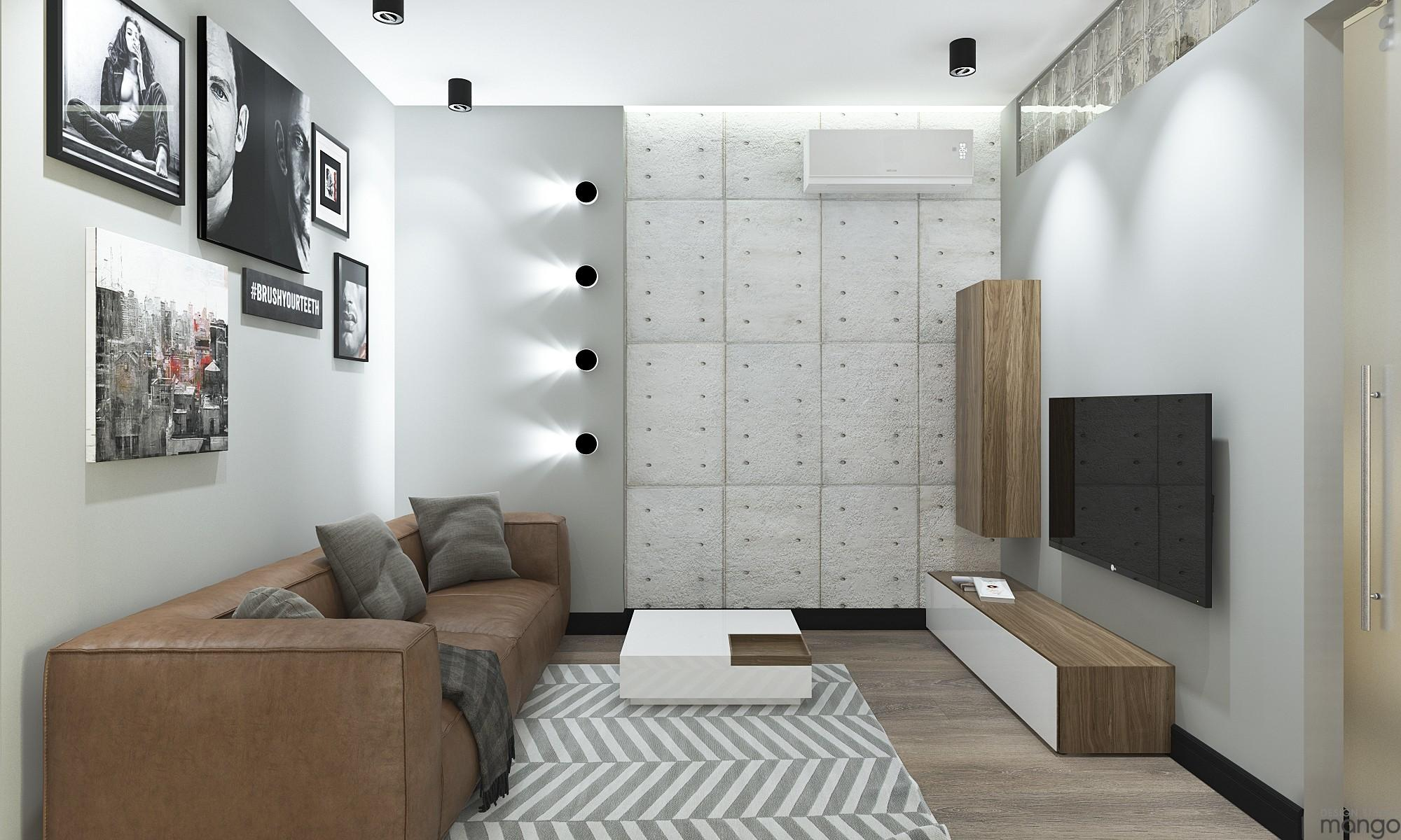 Types Small Living Room Designs Combined Between