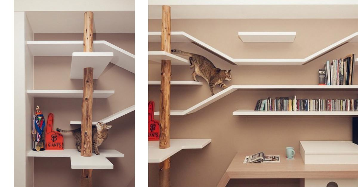 Ultimate Cat House All Cats