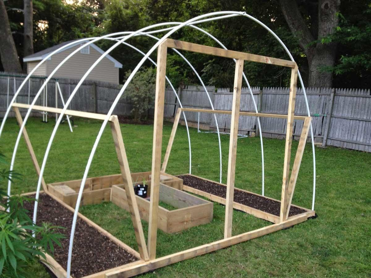 Unbelievable Diy Greenhouse Grow Weed Easy