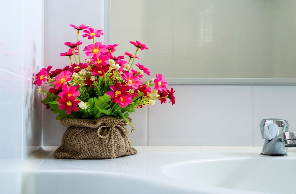Uncategorized Best Bathroom Plants Christassam Home Design