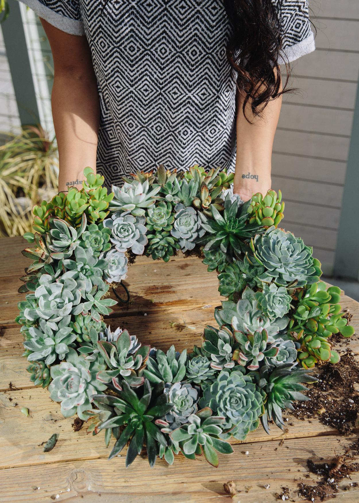 Uncovet Blog Presents Diy Succulent Wreaths