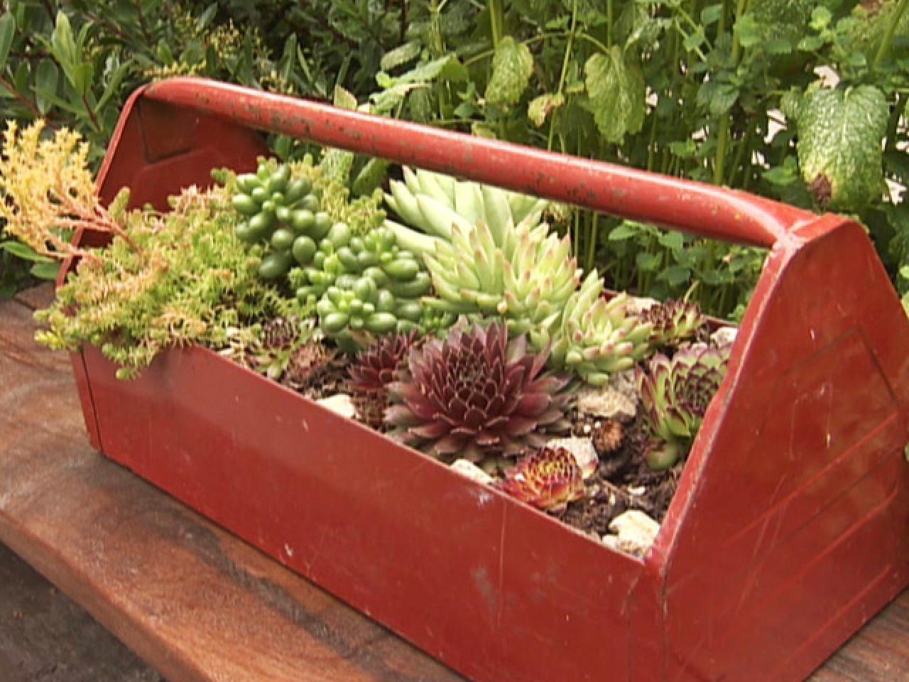 Unusual Upcycled Container Gardens Diy Garden