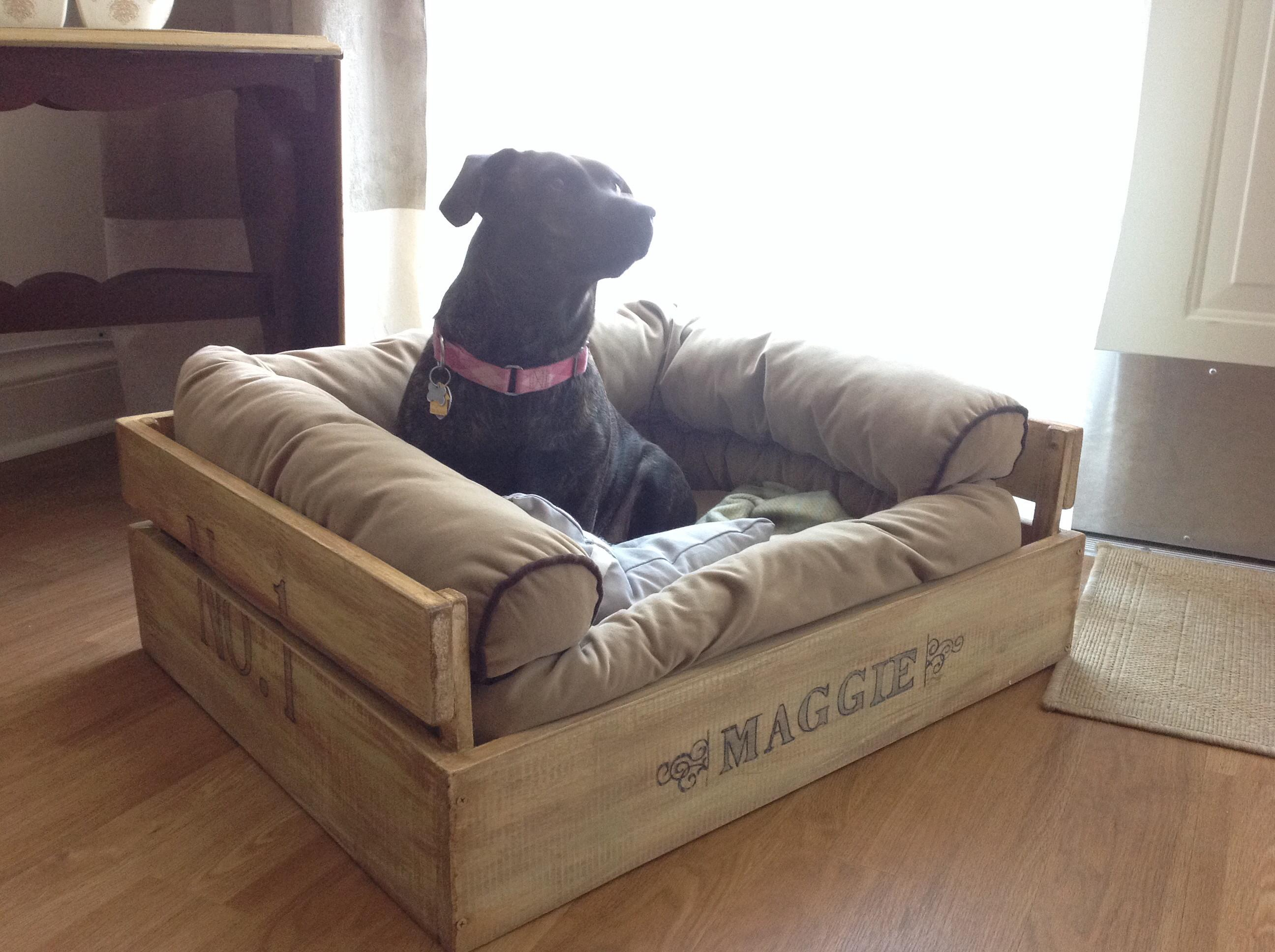 Upcycle Wood Pallets Into Cozy Outdoor Dog Bed