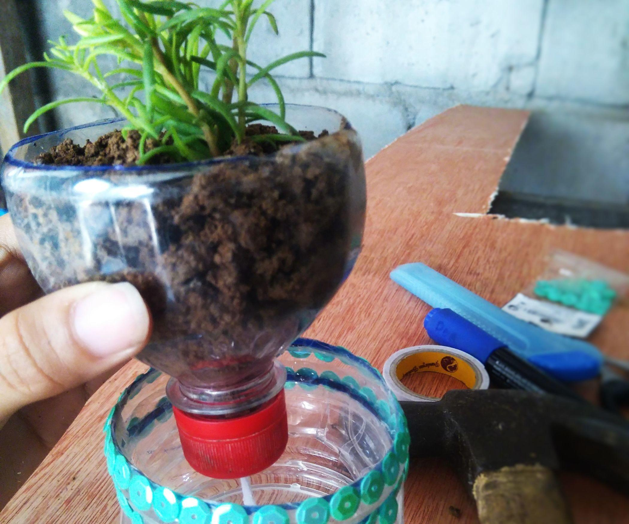 Upcycled Plastic Bottle Into Self Watering Planter