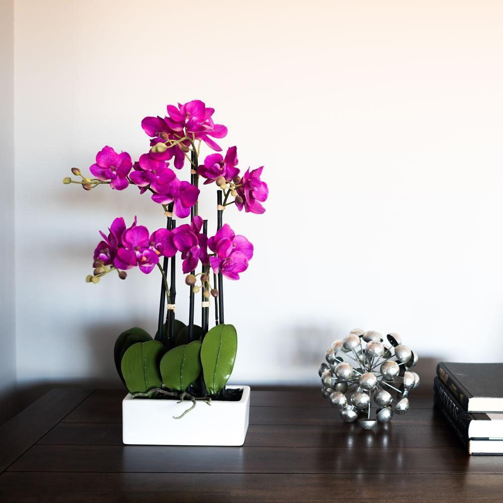 Vickerman Purple Potted Orchid Fc Home