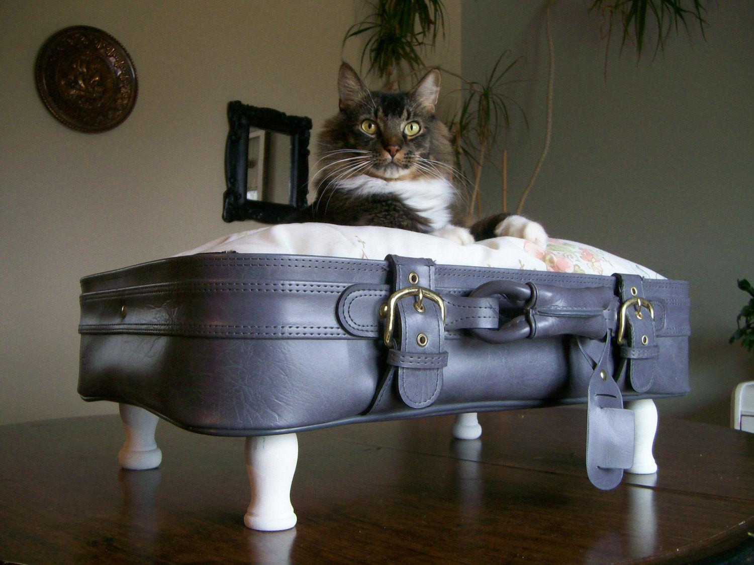 Vintage Repurposed Upcycled Suitcase Pet Bed Gray White