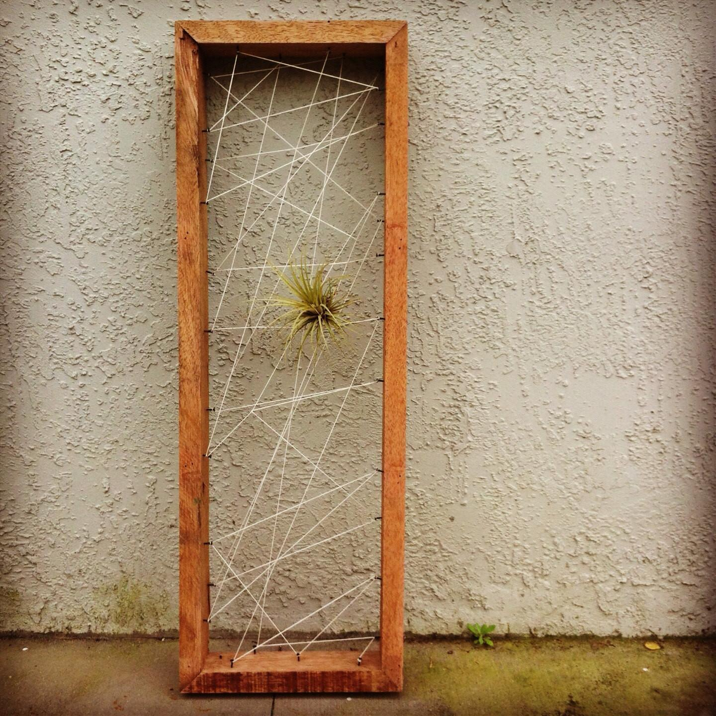 Wall Art Air Plant Personal Rustic Reclaimed