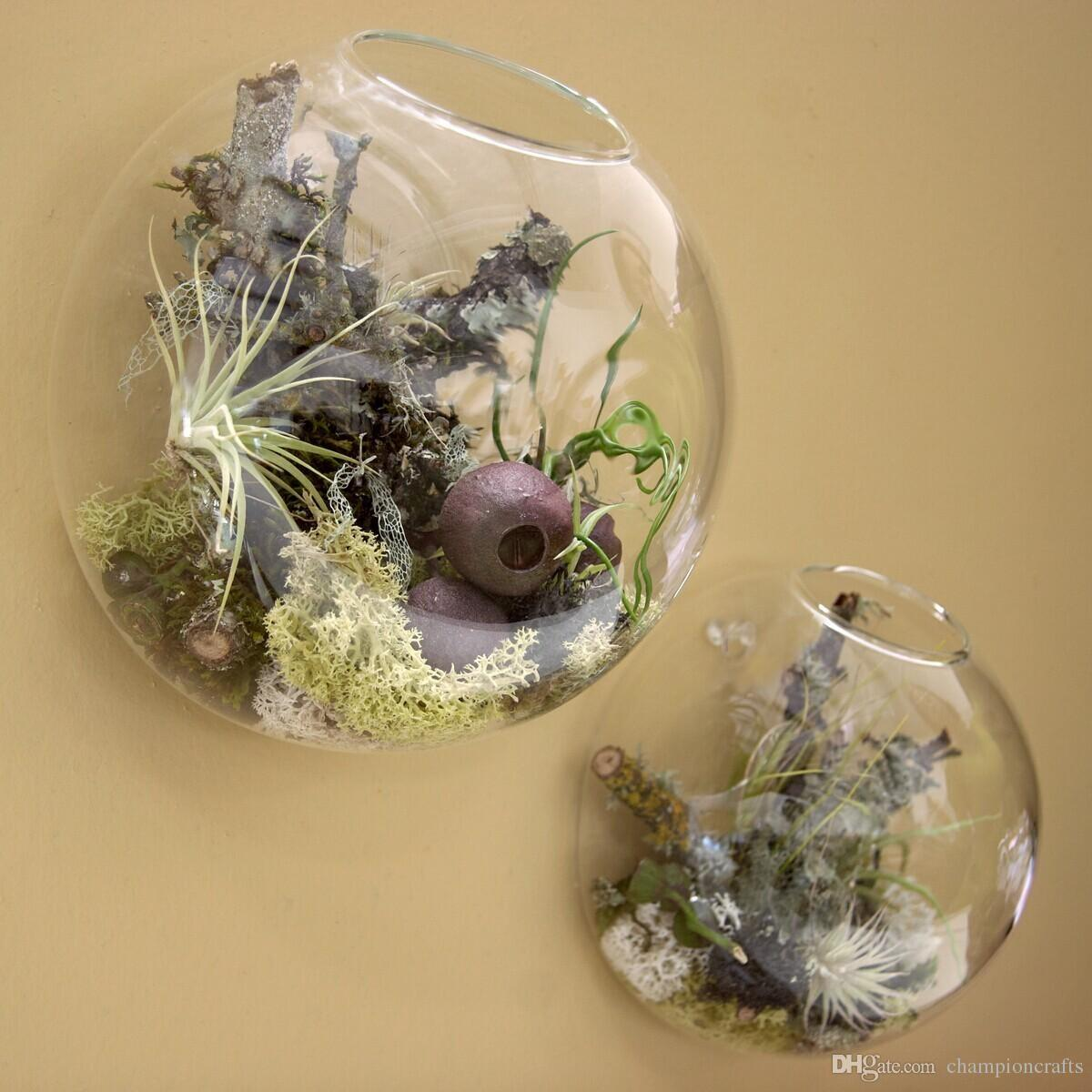 Wall Bubble Glass Terrarium Succulent Planter