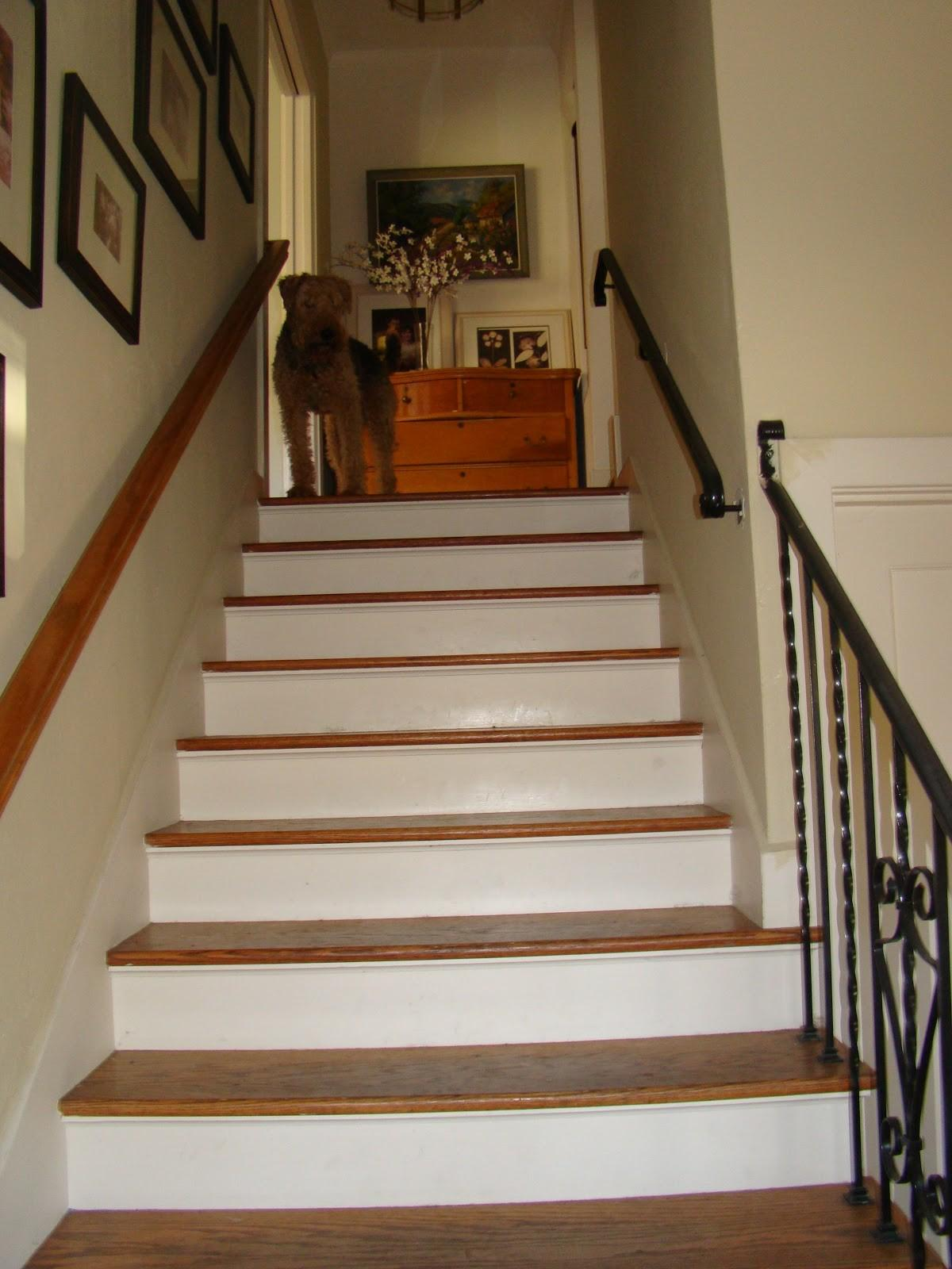 Wallpapered Stair Risers Barnaclebutt