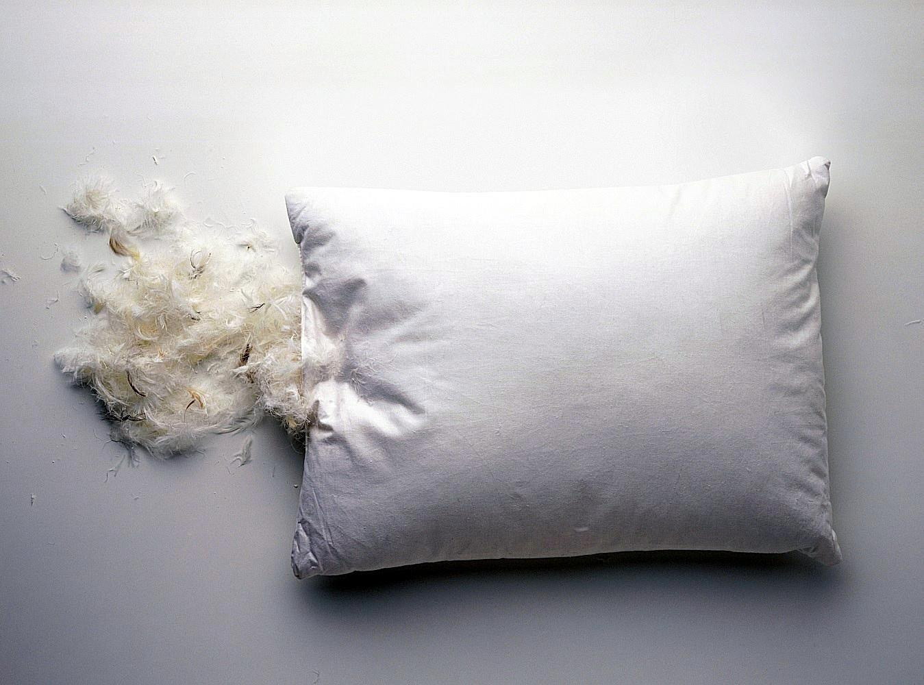 Wash Feather Bed Pillows