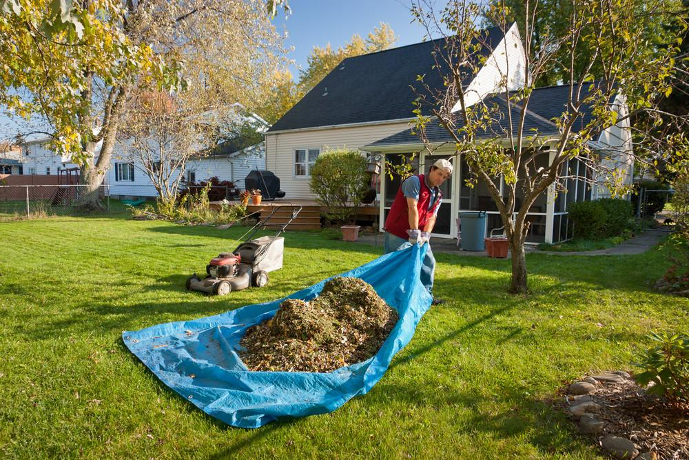 Ways Green Your Fall Yard Cleanup Securr Trash
