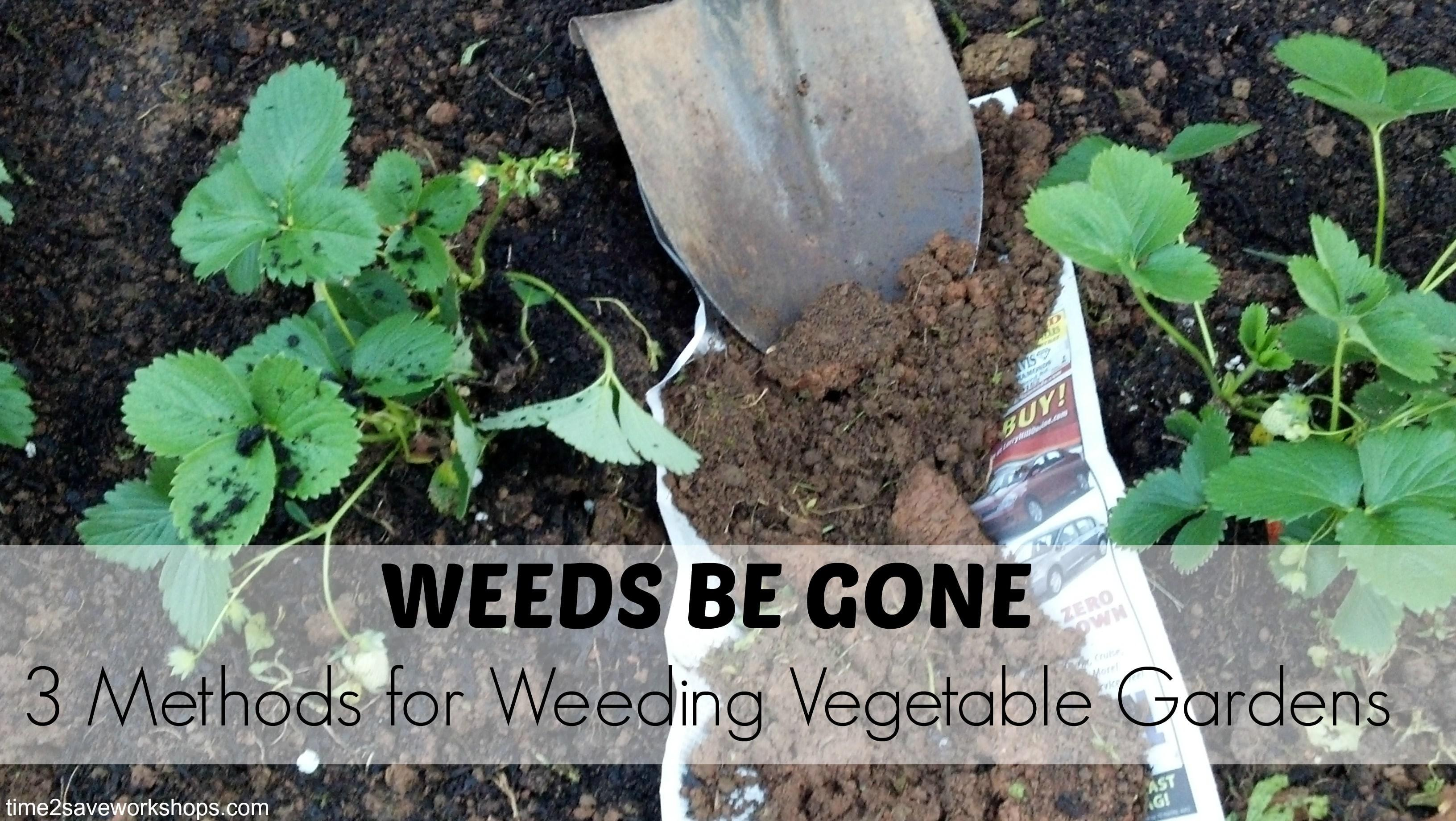 Weeds Gone Three Methods Weeding Vegetable Gardens