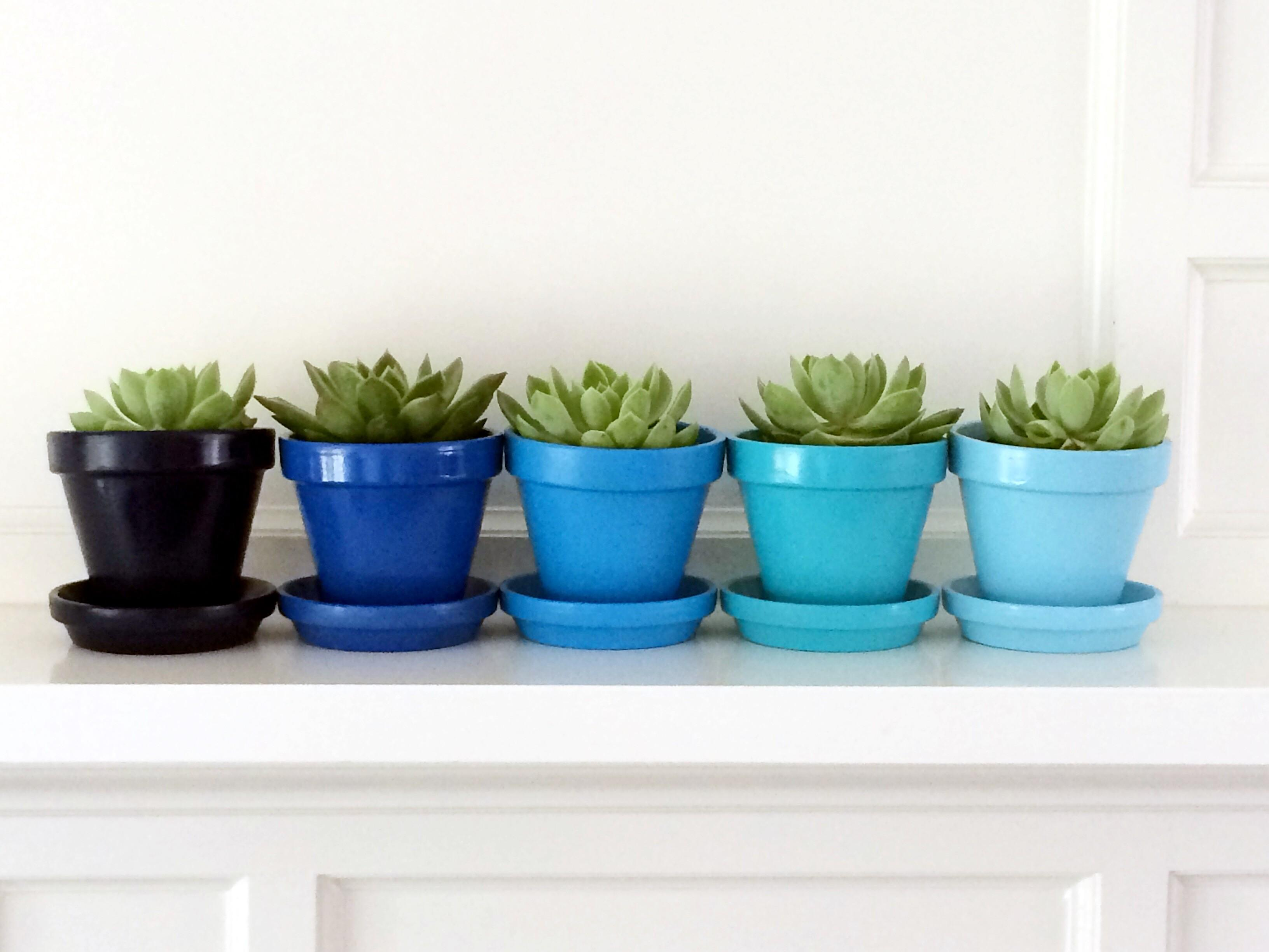Weekend Project Diy Ombre Pots Jane Can