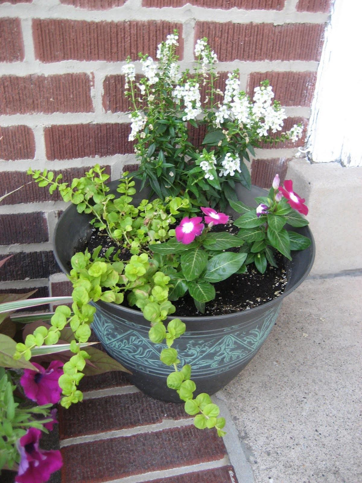 West Pear Avenue State Planters Front Door Ideas