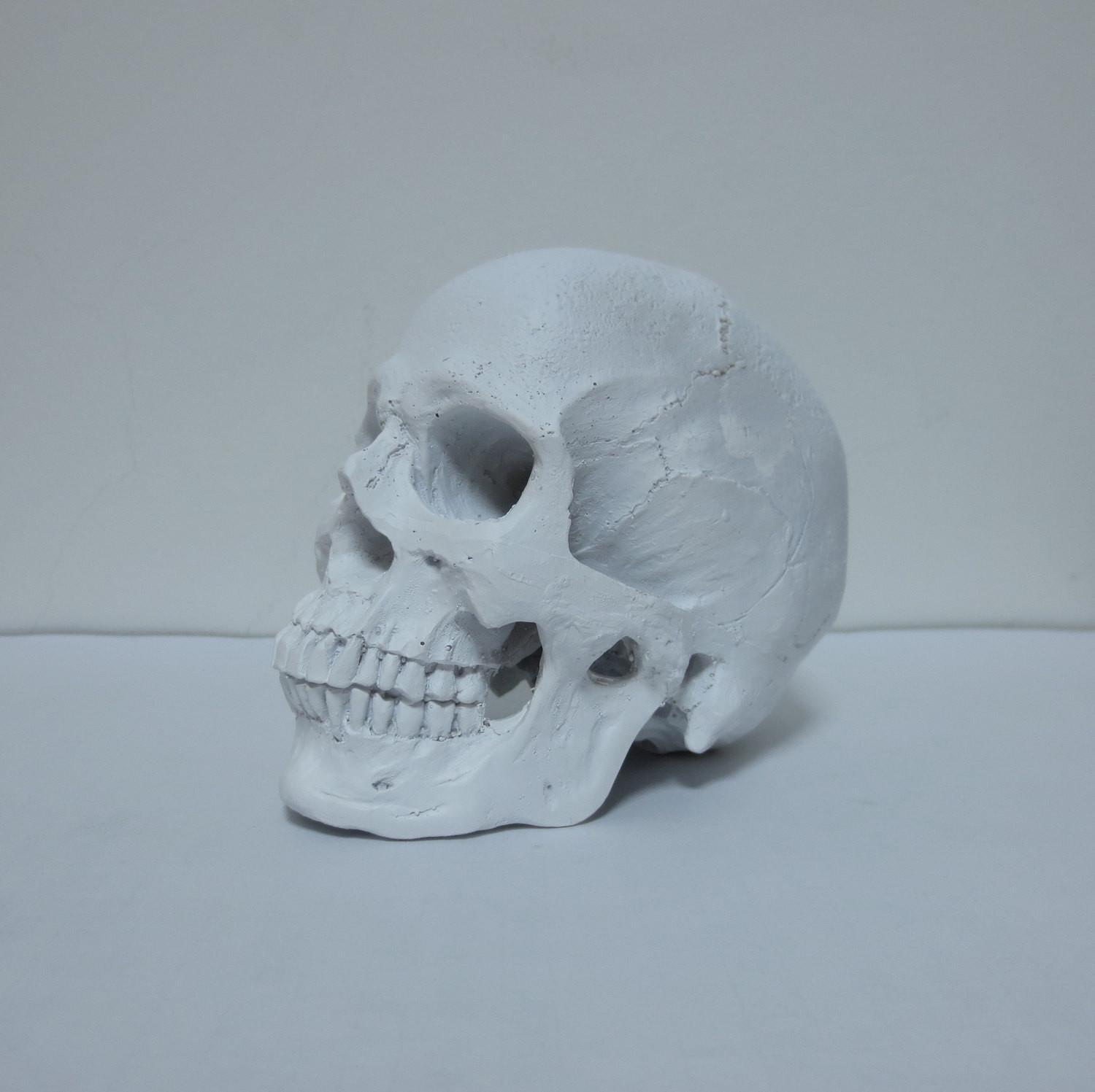 White Human Skull Faux Home Decor