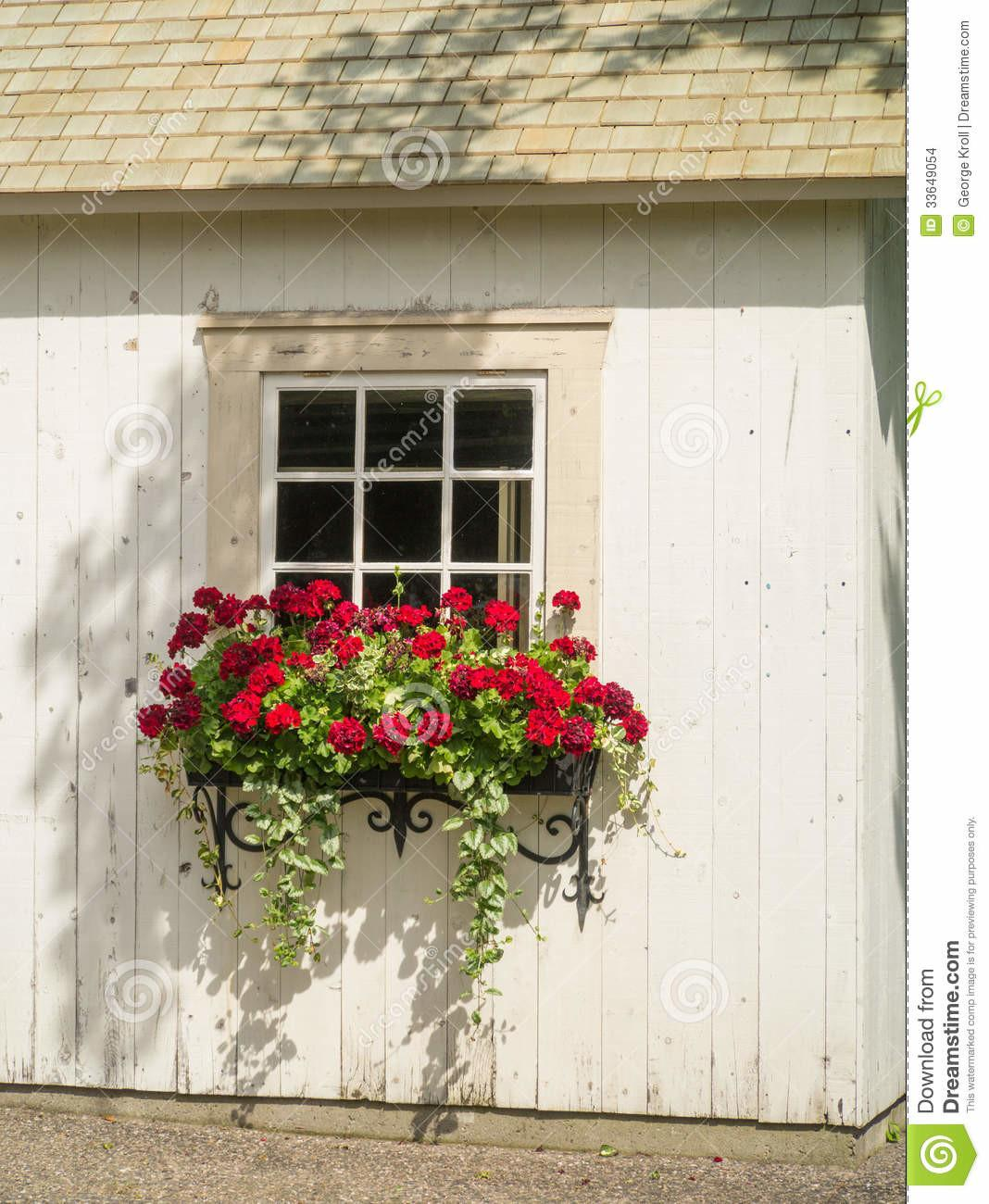 White Wall Window Flowers Box Planter Stock