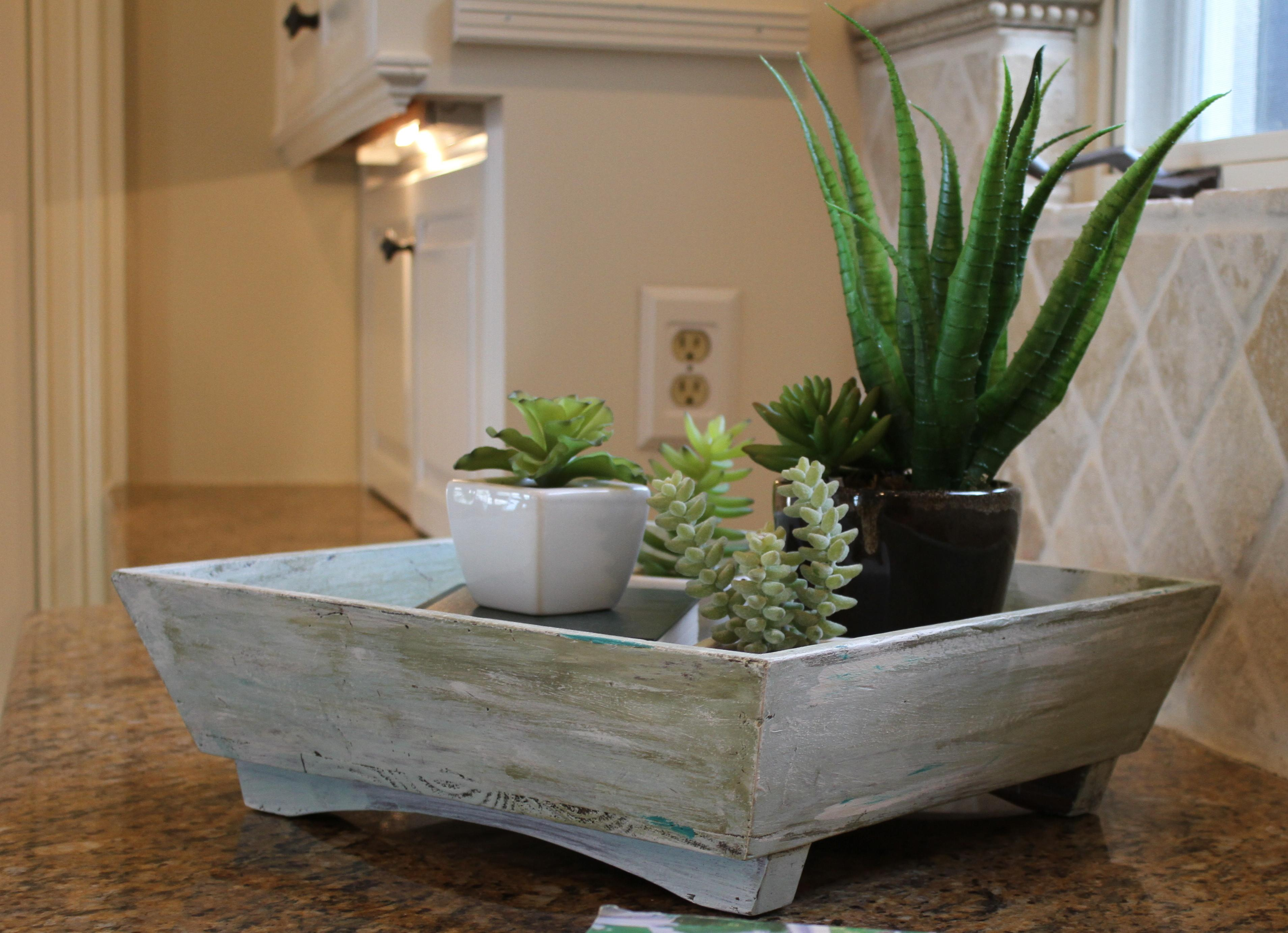 Whitewashed Wooden Tray Filled Indoor Succulent