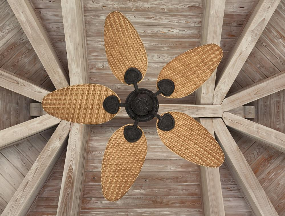 Why Should Fans Along Your Modernize