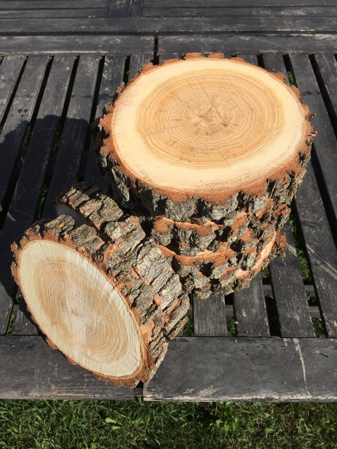 Willow Log 5in Slice Wood Coasters Disk Center