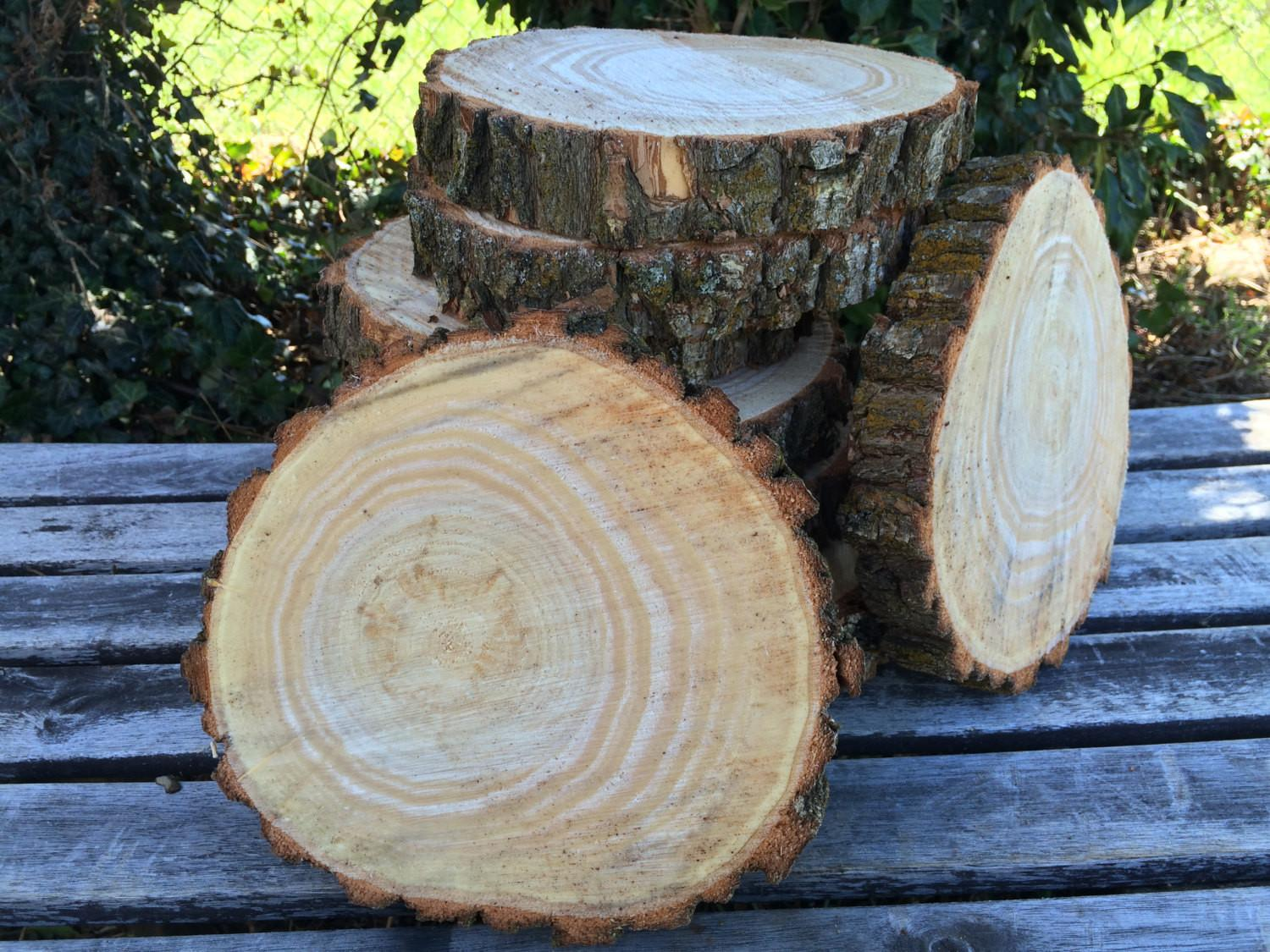 Willow Log 9in Slice Wood Coasters Disk Center