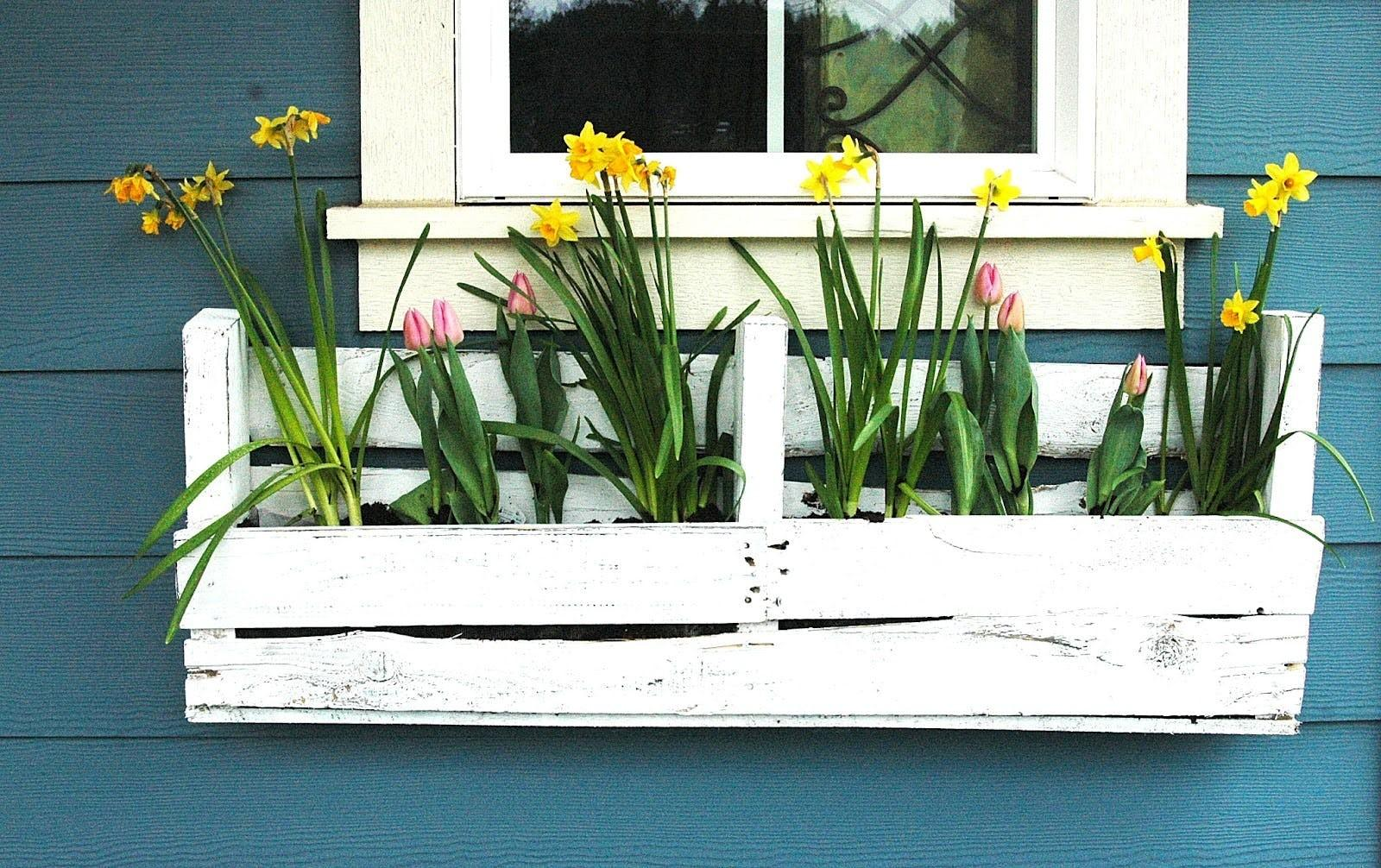 Window Box Inspo Ideas Space Saving Planters