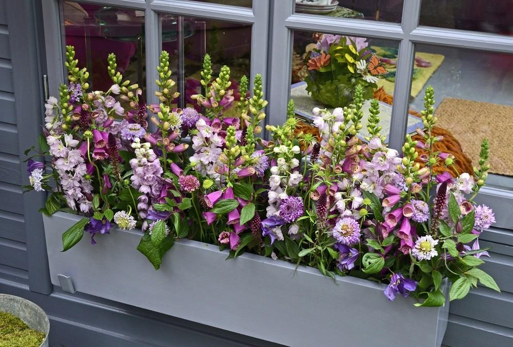 Window Box Planters Can Add Spring Color Your Home